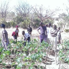 Natal Farm & Garden Project