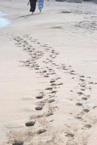 imprints9